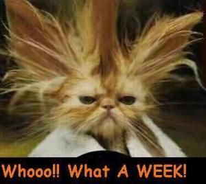 bad-week