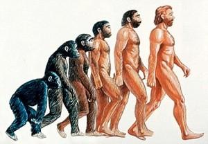 Human-Evolution