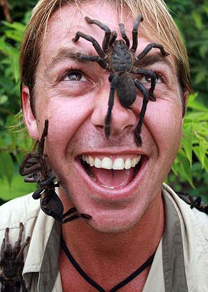 Tarantula On My Face Senseless Ramblings Of The Mindless