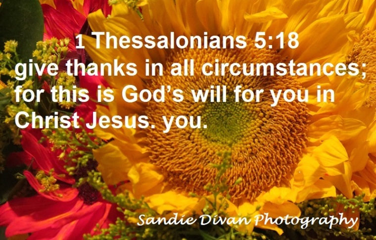 1thessalonians5181